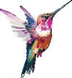 Nuhemp hummingbird small